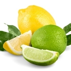 Lemon Lime II Flavor - 15ml